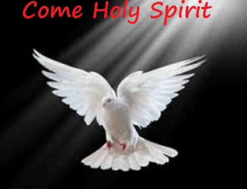 Day 1 NOVENA TO THE HOLY SPIRIT.    We Pray for the gift of WISDOM