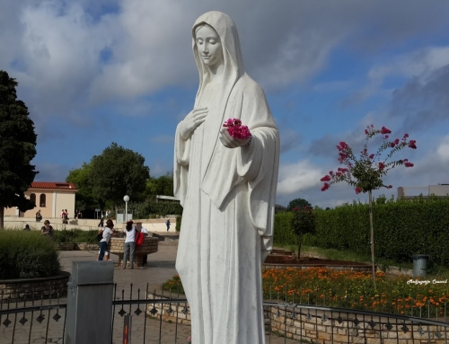 Message of Our Lady of Medjugorje through the visionary Marija Pavlović-Lunetti.  25th October 2017.