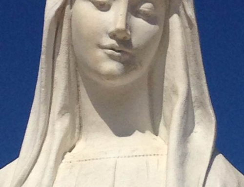 Message of Our Lady of Medjugorje for the world, through the visionary Marija Pavlović-Lunetti.  25th November 2017.