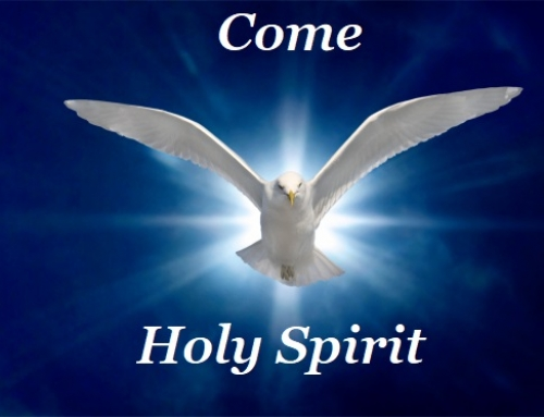 Day 7. 17th May.  NOVENA TO THE HOLY SPIRIT.  We pray for an out pouring of the gift of  FEAR OF THE LORD.